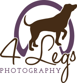 4 Legs Photography